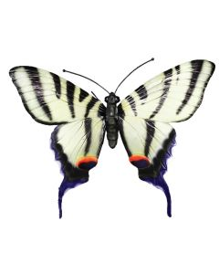 Giant 3D White Butterfly Garden Ornament Wall Decoration