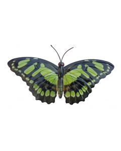 Large Green and Black Butterfly Garden Ornament