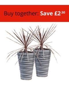 Two Medium Trojan Planters Bundle