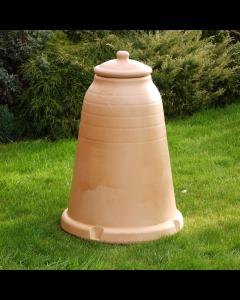 Rhubarb Forcer - Antique Terracotta