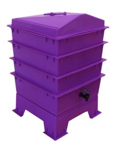 4 Tray Deluxe Tiger Rainbow Wormery Dark Orchid Purple